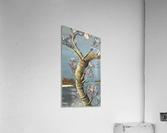 tree  Impression acrylique