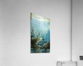 under water  Impression acrylique