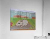 White mouse  Acrylic Print
