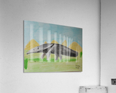 Anteater  Acrylic Print