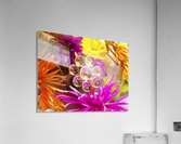 FLOWERS REFRACTION 9  Acrylic Print