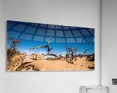 Death Valley Night  Acrylic Print