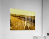 sofn-73D2CA6C  Acrylic Print