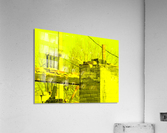 sofn-C6D66D35  Acrylic Print