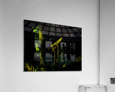 sofn-DA9C9A13  Acrylic Print