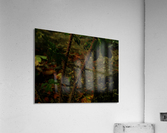 sofn-163F956E  Acrylic Print