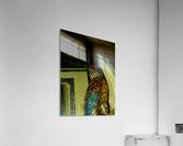sofn-4C7FC1AC  Acrylic Print