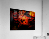 sofn-892B7068  Acrylic Print