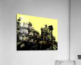 sofn-7426FB6B  Acrylic Print