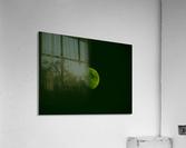sofn-62826B59  Acrylic Print