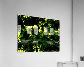 sofn-C233ABC3  Acrylic Print