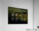 sofn-AD479C1C  Acrylic Print