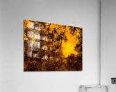 sofn-8D23D86C  Acrylic Print