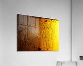 sofn-7F63BAA5  Acrylic Print