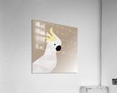 COCKATOO BIRD LOW POLY ART  Acrylic Print