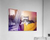 Murmur 2  Acrylic Print