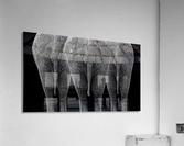The Elephants  Acrylic Print