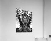 Mistress Of The Cuboid BW  Acrylic Print