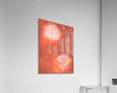 Floral Pink Coaral   Acrylic Print