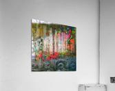 IMG_7888  Acrylic Print