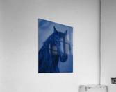 Blue Heart  Acrylic Print