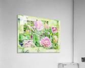 Soft Rose Fragments  Acrylic Print
