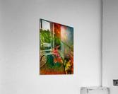 Keeper of the Tree 2  Acrylic Print