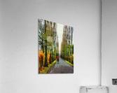Cemetry Road  Acrylic Print