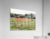 Old Farm House With Poppies  Acrylic Print