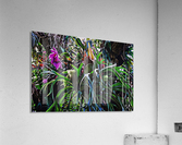 Stag Horn And Orchid Fantasy Garden  Acrylic Print