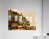 animal reptile lizard iguana  Acrylic Print