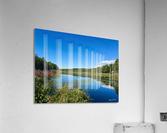 WarrenPond  Acrylic Print