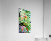 Rasta Leaves  Acrylic Print