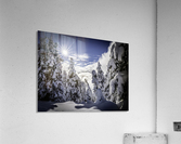 Kootenay Alpine Snow  Acrylic Print