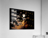 Sky Talk  Acrylic Print