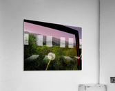 Alone yet Connected  Acrylic Print