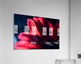 Red 1  Acrylic Print