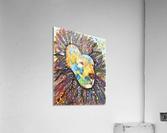 Lively Lion.Maggie Z  Acrylic Print