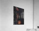 Three  Acrylic Print