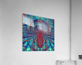 Blue_Spider  Acrylic Print