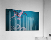 KIMG4117  Acrylic Print