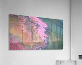 KIMG4113  Acrylic Print