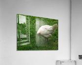 pics 132  Acrylic Print