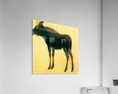 Elk by Bierstadt  Acrylic Print