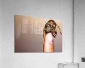 Golden Molt  Acrylic Print