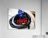 Robot Bike Helmet Tomatoes  Acrylic Print