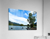 FB_IMG_1551063469653  Acrylic Print