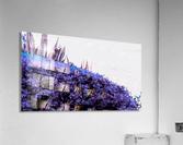 Dancing Violet   Acrylic Print