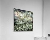 Demolisher  Acrylic Print