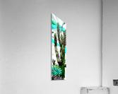 Cactus One  Acrylic Print